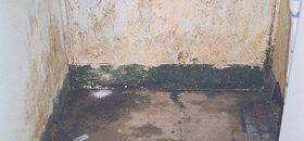 Wet Area Mould